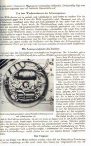 MopedHandbuch2 [website]